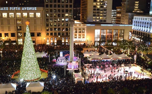 Union Square Holiday Ice Rink and Tree
