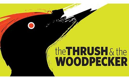 The Thrush & the Woodpecker